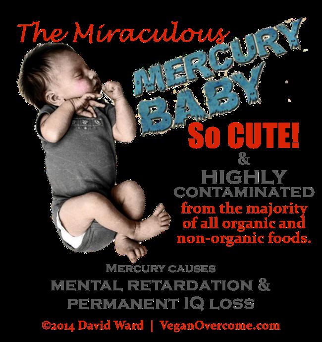 VO-Miraculous-Mutant-Mercury-Babies-1
