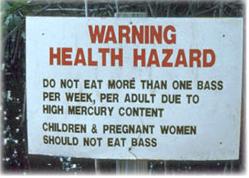 VO-fish-mercury-poisoning